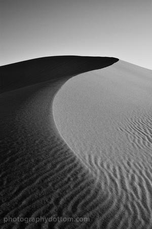 Mesquite Dunes #4